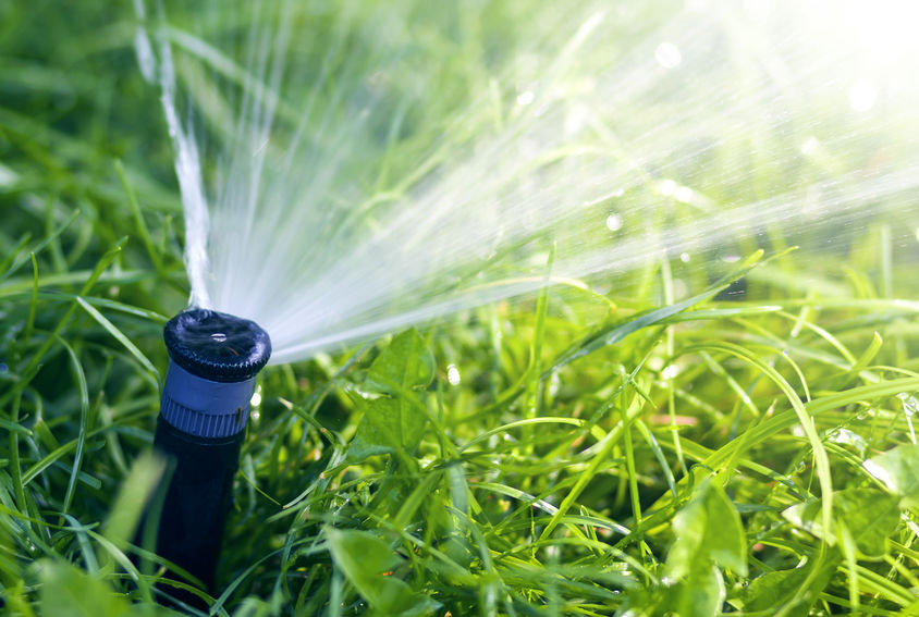 Lawn Watering Mistakes